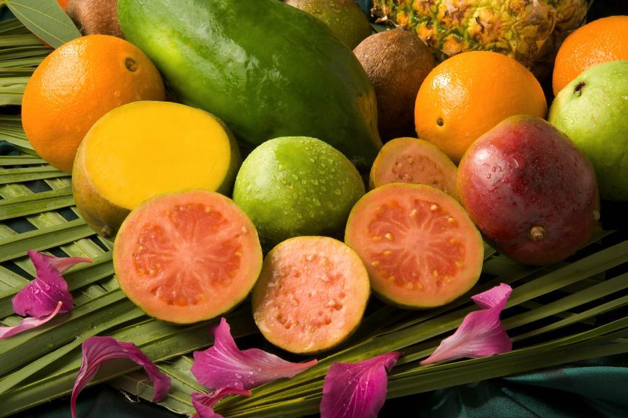 frunzele guava ajută să piardă în greutate)